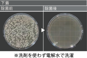 顕微鏡で見た雑菌